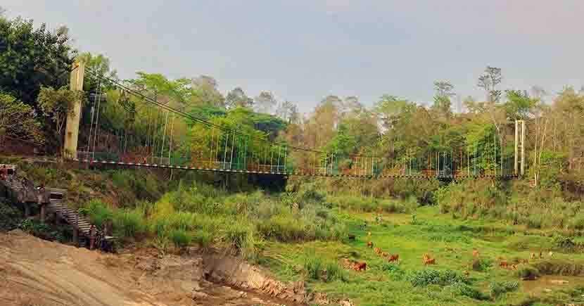 Banshkhali Eco park