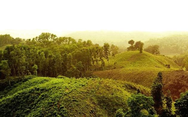 Lauchapra Picnic Spot