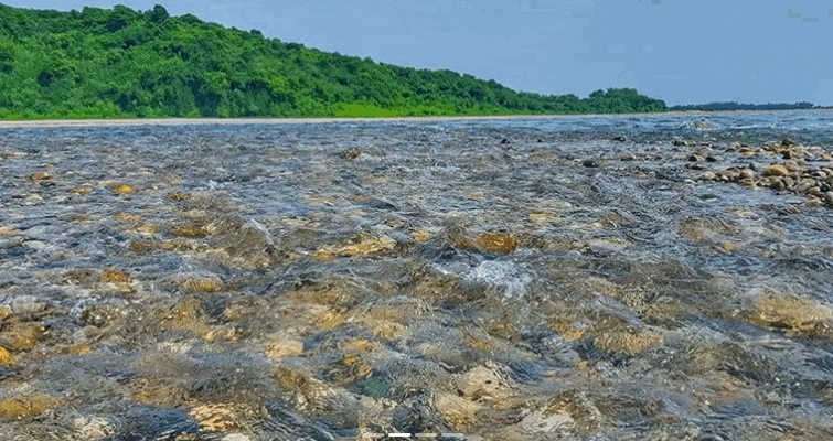 Bholagonj
