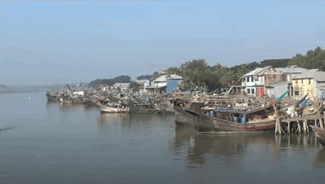 Alipur Fish Market