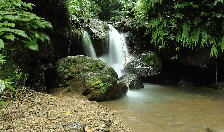 Chingri Waterfall