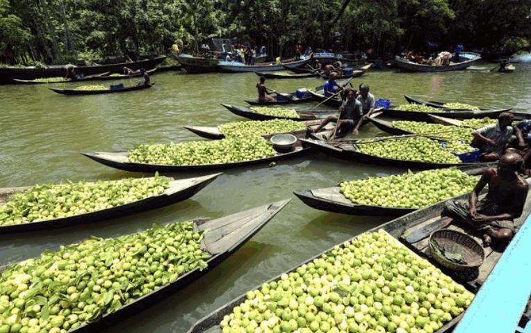 Floating Guava Market