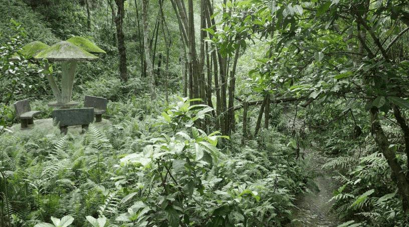 Khadimnagar National Park
