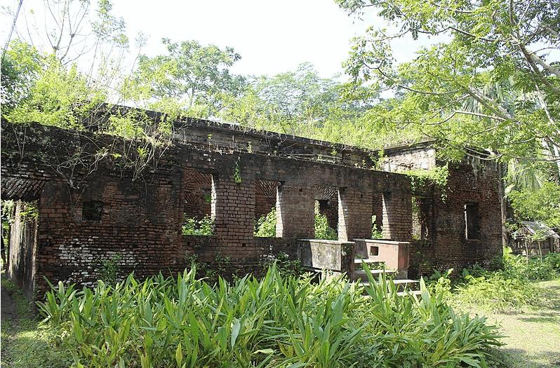 Saturia Zamidar Bari